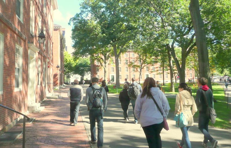 【世界トップ10大学】美しいキャンパスを覗いてみよう。