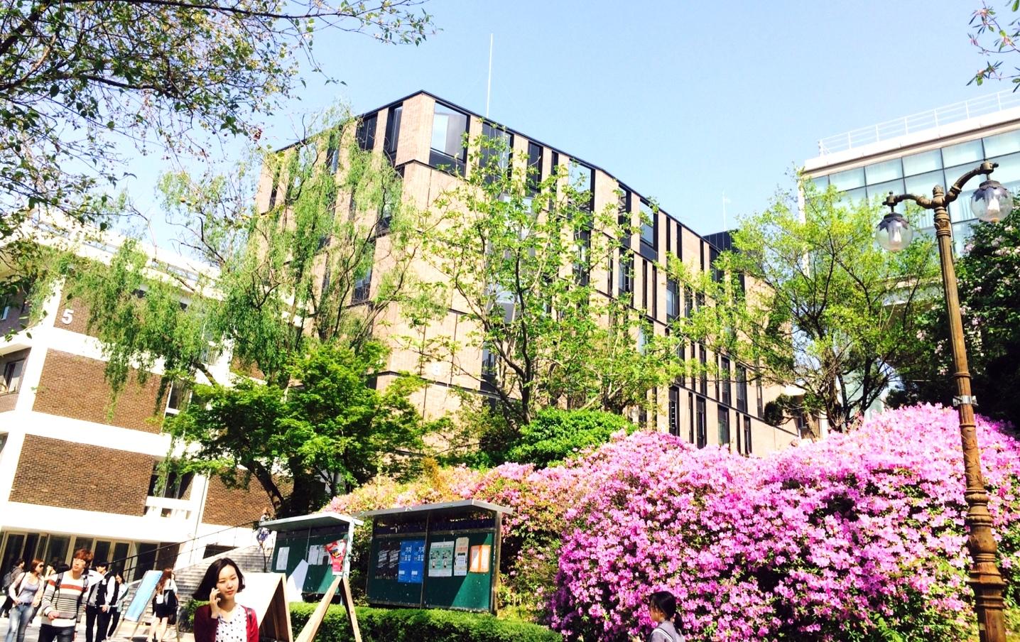 韓国の学生は勉強量がスゴい!?現地からソウル大学をレポート!