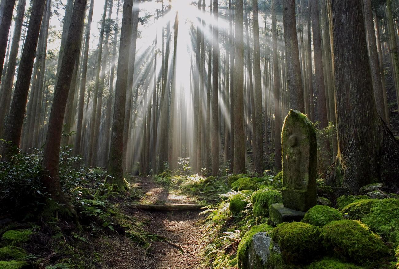 【世界が注目!】絶対に知っておきたい誇るべき日本の宗教観。