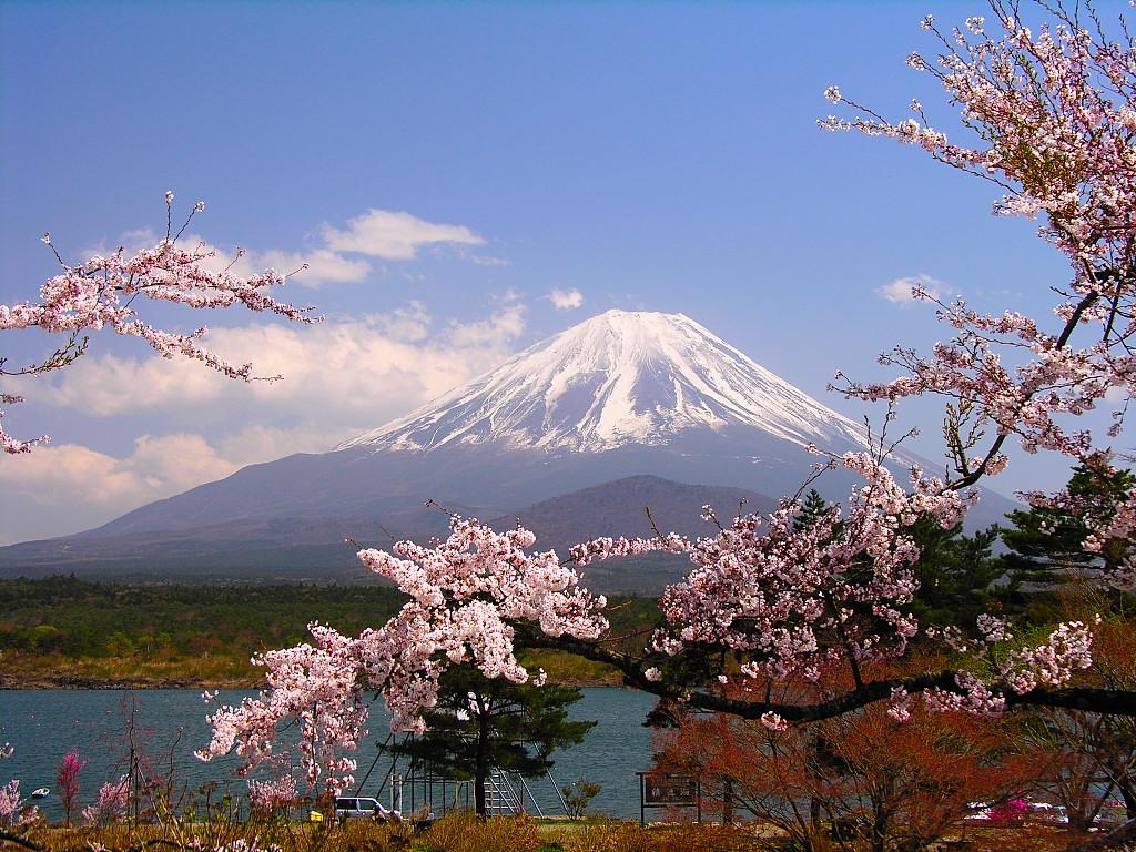 未来を描こう!2050年の日本はどうなっている!?